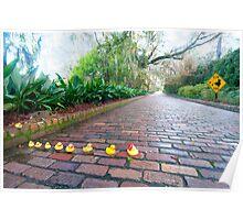 """Duck Crossing"" - Rubber ducks cross road Poster"