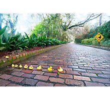 """Duck Crossing"" - Rubber ducks cross road Photographic Print"