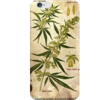 Marihuana plant iPhone Case/Skin