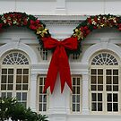 Christmas At The White House, Er, White Hotel by David McMahon