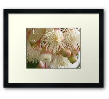 Chantilly Lace Framed Print