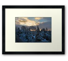 sunrise over snowy trees Framed Print