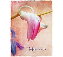 Memories Photographic Print