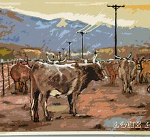 Cattle, Lone Pine by Martin Gyger