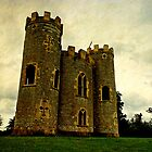 Blaise castle, Bristol, UK by buttonpresser