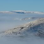 Frosty Swaledale by Kat Simmons