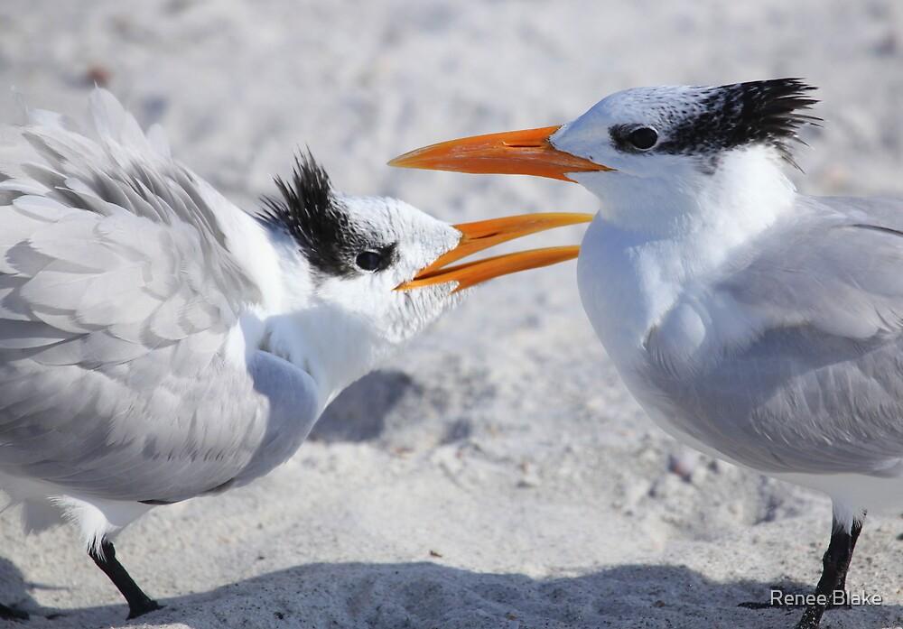 """ Hey ! Mom Said it Was MY Tern "" by Renee Blake"