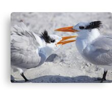 """ Hey ! Mom Said it Was MY Tern "" Canvas Print"