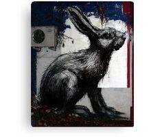 Giant Rabbit, By ROA Canvas Print