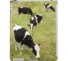 Holstein cows iPad Case/Skin