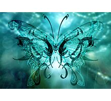 Butterfly blue'... Photographic Print