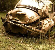 Used & Abused Bug by vschmidt