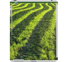 Backlit farmland iPad Case/Skin