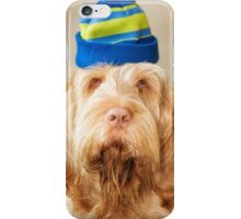 Orange & White Italian Spinone Head Shot with Hat iPhone Case/Skin