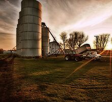 Twilight at the Elevator by Steve Baird