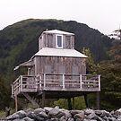 Beach house, Seward, AK by yakkphat