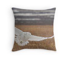 Snowy Owl Over Winter Grass Throw Pillow