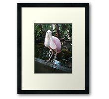 Tranquil Bird Framed Print