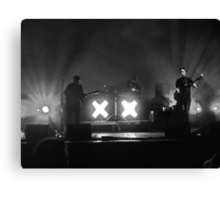 The XX Canvas Print