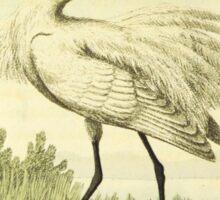 Stork Illustration Sticker