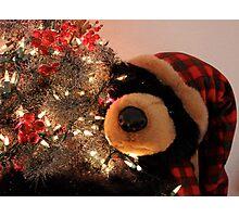 Merry Christmas Bear Photographic Print