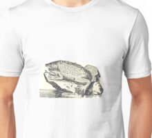 surinam toad illustration Unisex T-Shirt