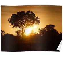 Lumiere d'Afrique Poster