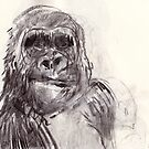 Bemused Gorilla Girl by WoolleyWorld
