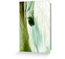 Equine Eye Greeting Card
