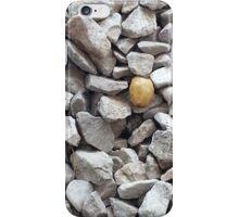 sid iPhone Case/Skin