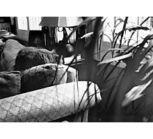 Couch Cat Photographic Print