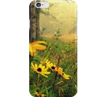 Country side iPhone Case/Skin