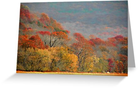 Top Of Autumn by NatureGreeting Cards ©ccwri