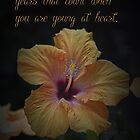 Hibiscus Glow by bellecards