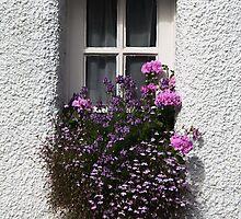 Little Window of Culross by simpsonvisuals