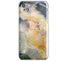 Golden Thread (Petrified Wood) iPhone Case/Skin