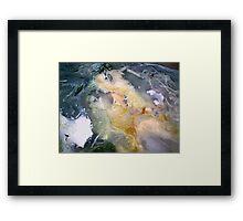 Golden Thread (Petrified Wood) Framed Print