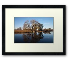 Reflections on the riverbank, Broadland. Framed Print