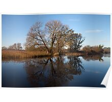 Reflections on the riverbank, Broadland. Poster