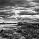 Avalon Beach Panorama  by peterperfect