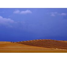 Country gold Photographic Print