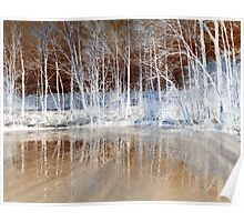 Icy Reflections  Poster