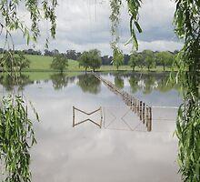 Flooded by Rob McGrath