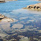 Weedpool, Cape Paterson, Victoria by Susie Raine