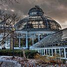 Stormy Allan Gardens - II by Marilyn Cornwell