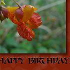 It's Jerry's Birthday! by vigor