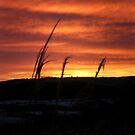 Sunrise, Monreith Dec 9th 2010 by sarnia2