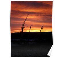 Sunrise, Monreith Dec 9th 2010 Poster