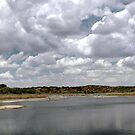 Copper Breaks Big Pond by Gregory Collins