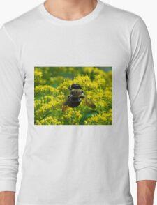 Mr. Bumble Long Sleeve T-Shirt